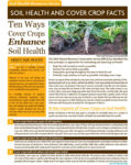 article on ten ways cover crops enhance soil health