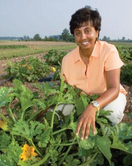 Woman kneeling in vegetable crop.