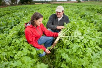 Researcher and farmer holding a tillage radish