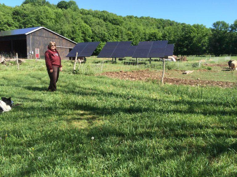 Woman in a farm field beside a solar array