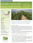 download organic production of blackberries in high tunnels in West virginia fact sheet in pdf format