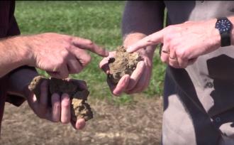 Cornell soil health assessment