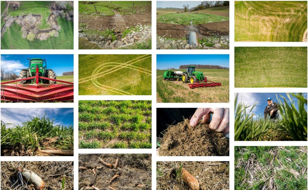 Cover-Crop-Images-Library-screenshot.jpg