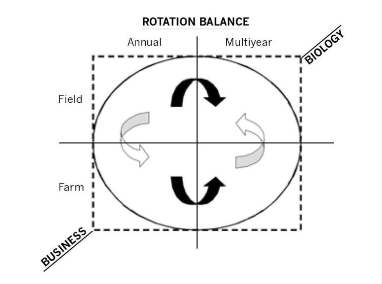 FIGURE 2.1 Rotation planning balances the management of field- and farm-level decisions on an annual and a multi-year basis. Annual farm-level decisions tend to prioritize business concerns. Multi-year decisions tend to prioritize and accommodate biological demands.