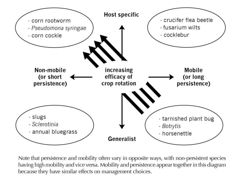 Fig-3.2-Crop-rotation-and-pest-control