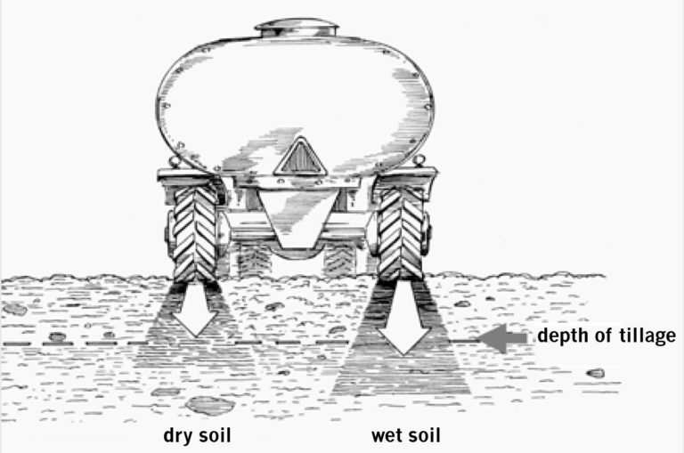 Compactive forces are transferred deeper in wet soils