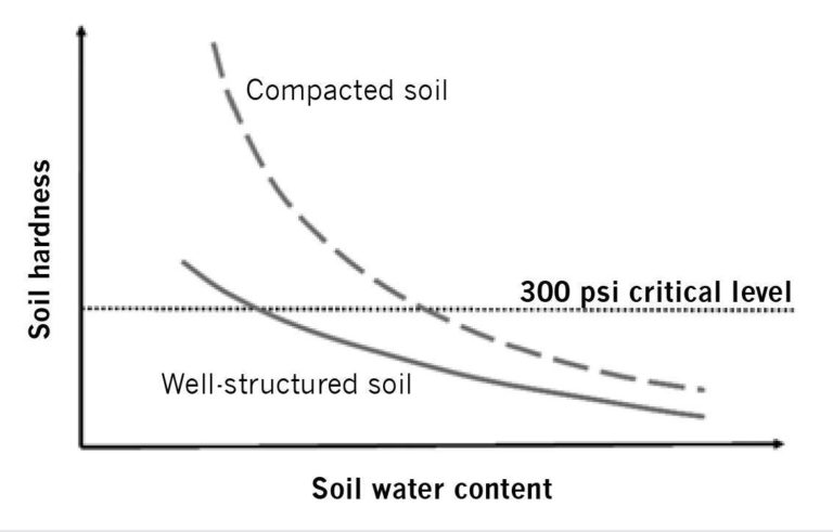 The effect of soil water content on soil hardness of a well-structured and a compacted soil.