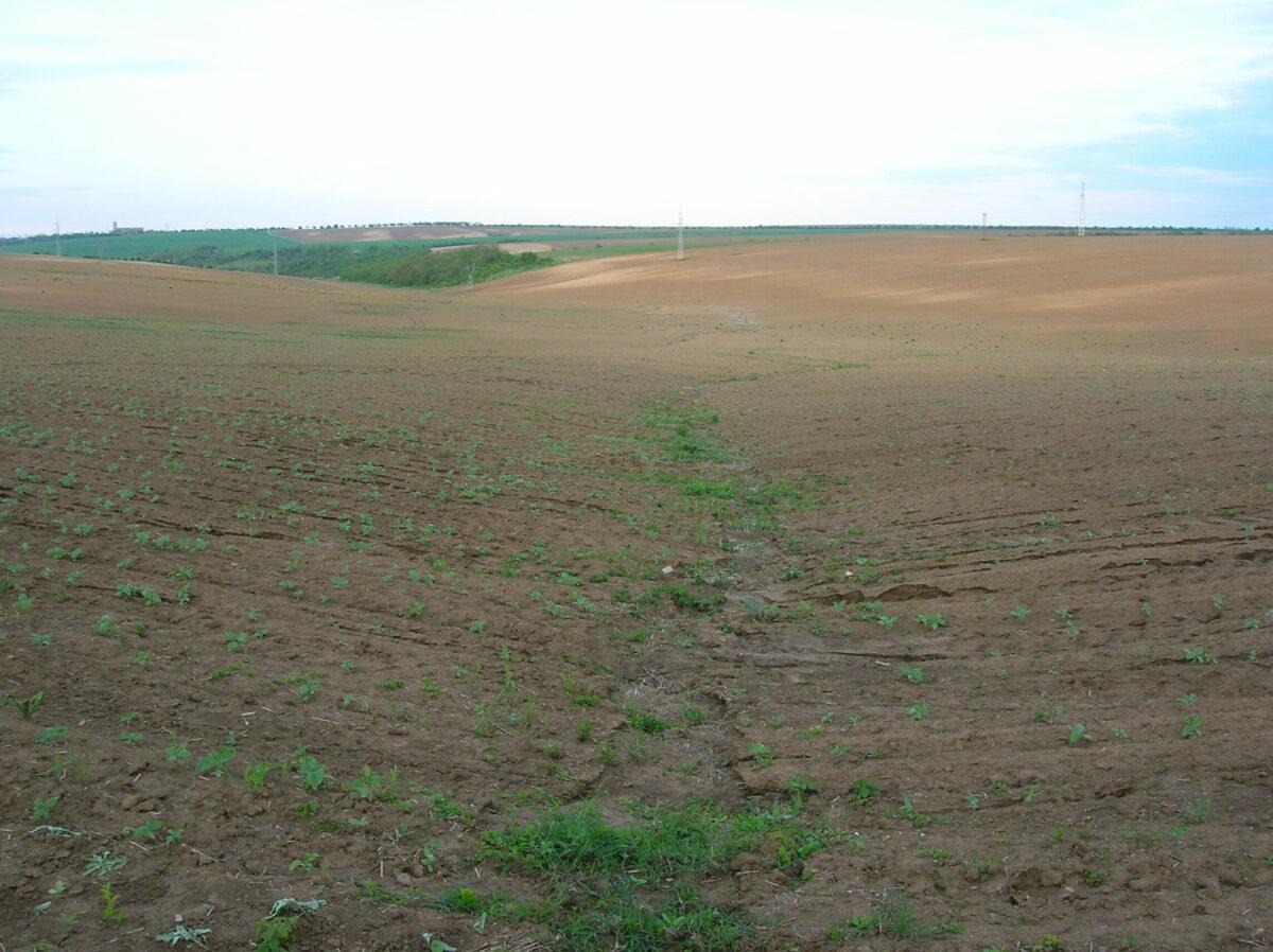 water erosion on clean tilled soil