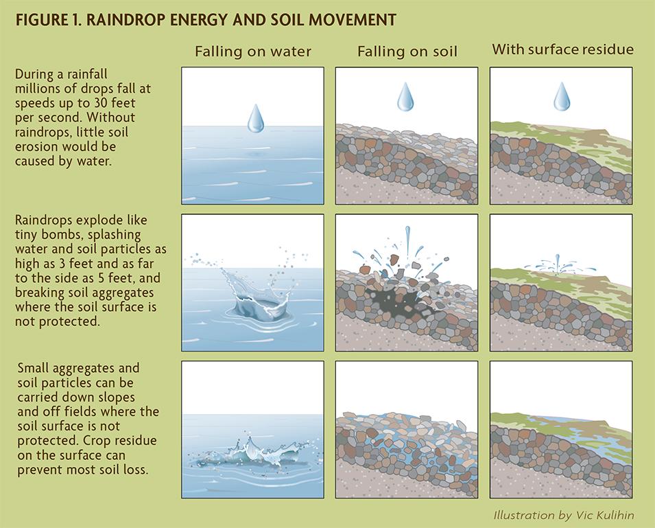Figure 1. Raindrop Energy and Soil Movement
