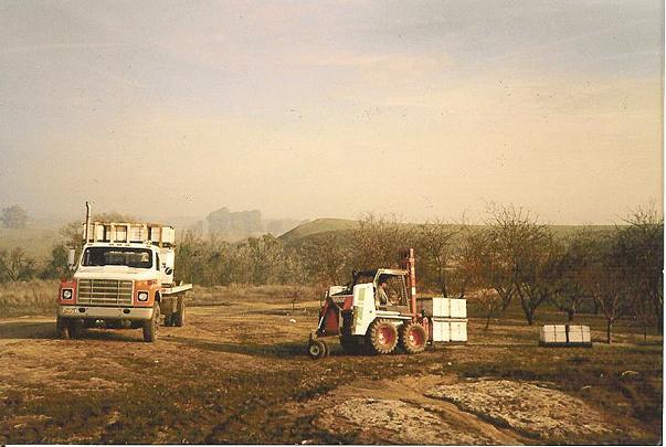Honey bees truck