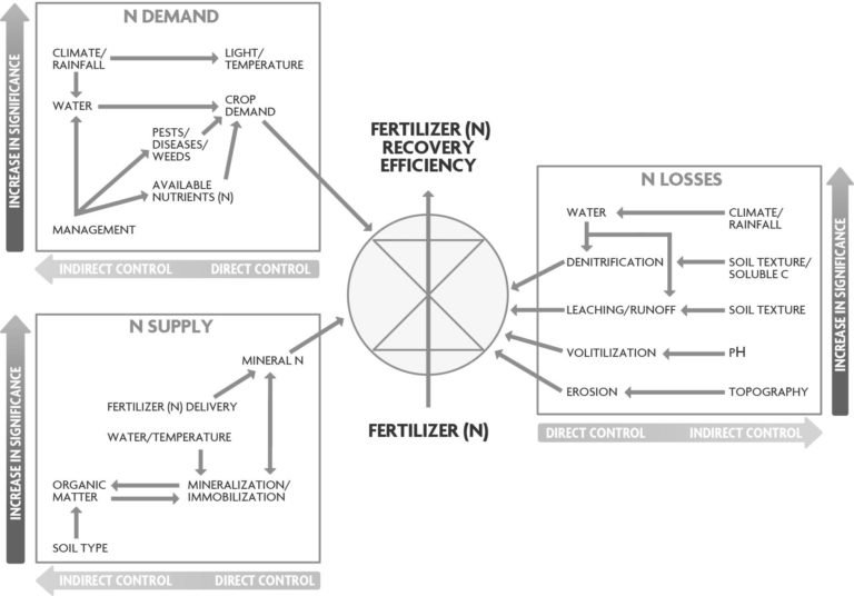 """Figure 3.2A. Crop, Environmental and Management Fators Affecting Nitrogen Use Efficiency. Conceptual model depicting the three main controlling processes (nitrogen demand, supply and losses) and the major mechanisms and factors regulating fertilizer N use efficiency. The symbol in the center represents the """"control center,"""" which influences the flow of fertilizer N into the crop. From Balasubramanian et al. (2004)."""