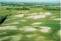 Figure 6.4. Effects of tillage erosion on soils.