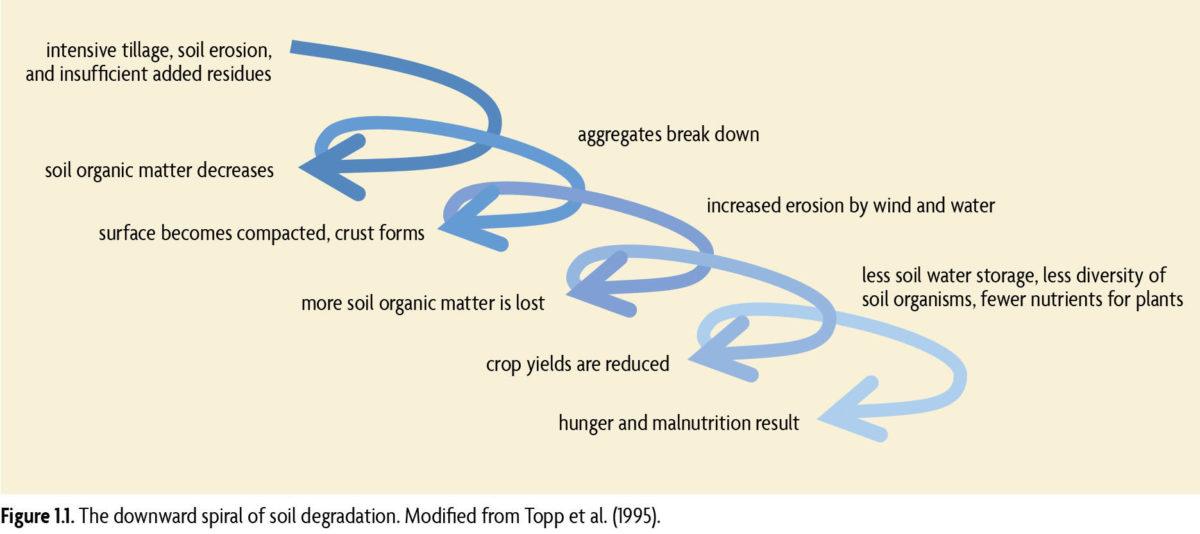 downward spiral of soil degradation