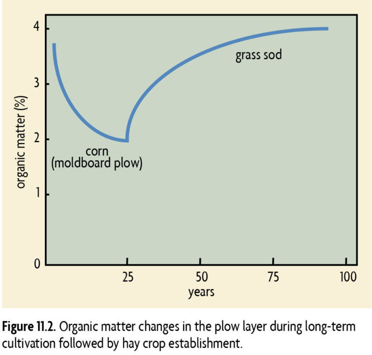 Figure 11.2 Organic Matter changes in the plow layer during long-term cultivation followed by hay crop establishment.