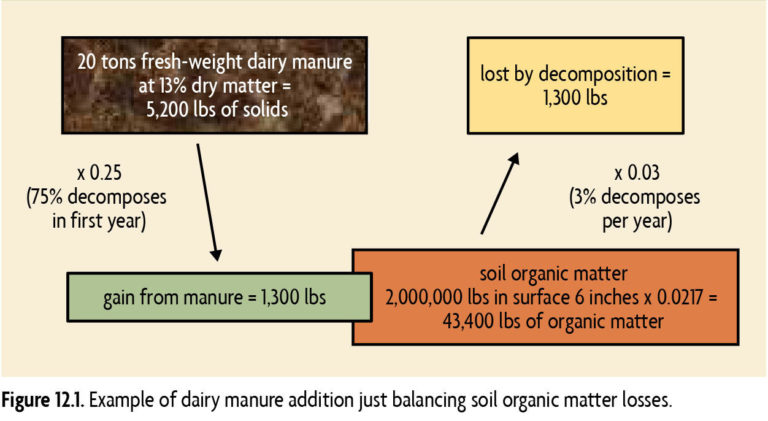 Figure 12.1 Example of dairy manure addition just balancing soil organic losses
