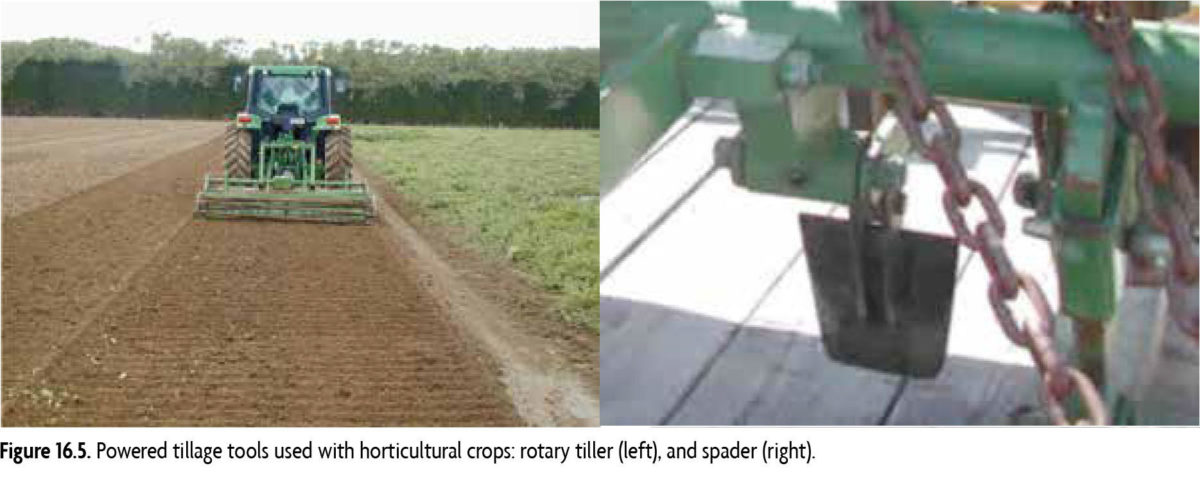 Figure 16.5:: Powered tillage tools used with horticultural crops; rotary tiller (left) and spader (right)