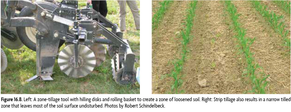 Figure 16.8: Left: A zone tillage tool with hilling disks and rolling basket to create a zone of loosened soil. Right: Strip tillage also results in a narrow tilled zone that leaves most of the soil surface undisturbed.