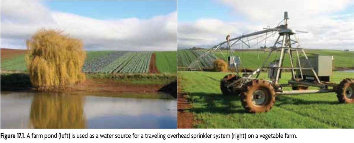 Figure 17.1 A farm pond (left) is used as a water source for traveling overhead sprinkler system (right) on a vegetable farm