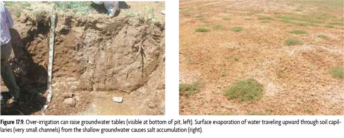 groundwater tables