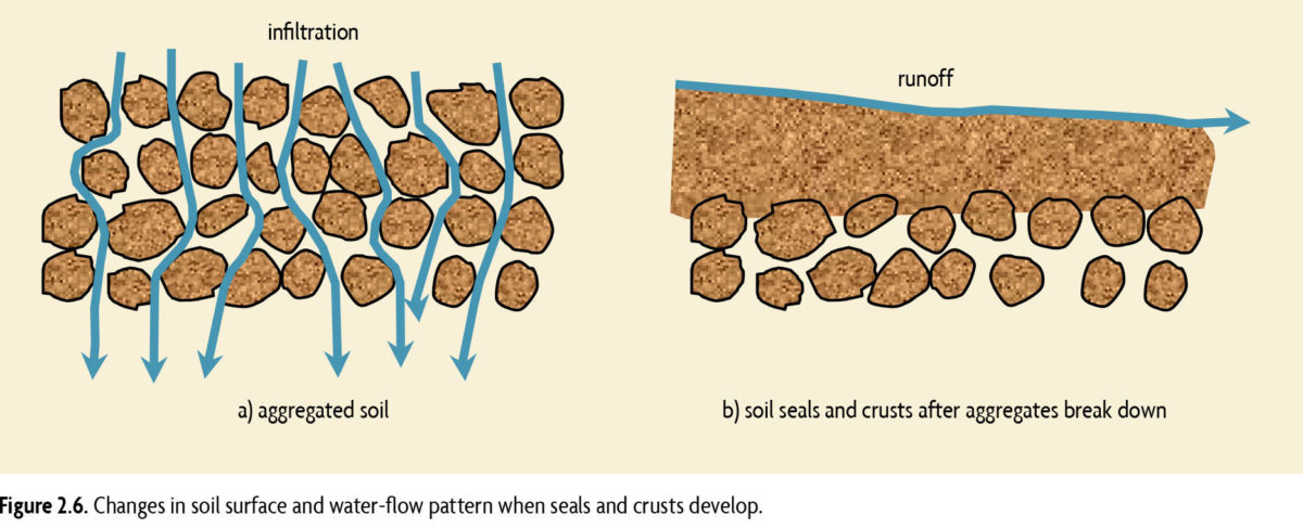 Figure 2.6. Changes in soil surface and water-flow pattern when seals and crust develop.