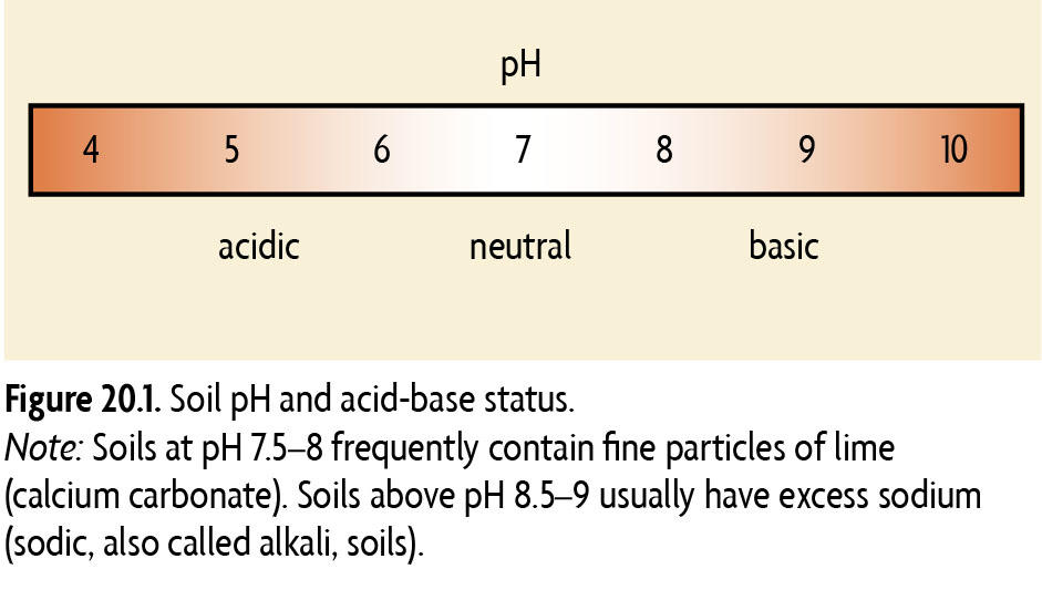 Figure 20.1 Soil pH and acid-base status. Note: Soils at pH 7.5-8 frequently contain fine particles of lime (calcium carbonate). Soils above pH 8.5-9 usually have excess sodium (sodic, also called alkali, soils).