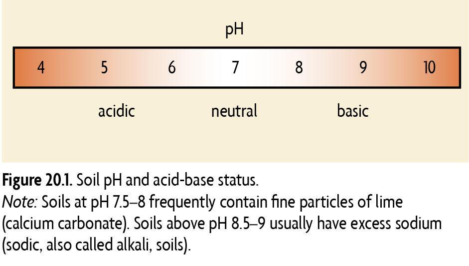 Soil Acidity Sare