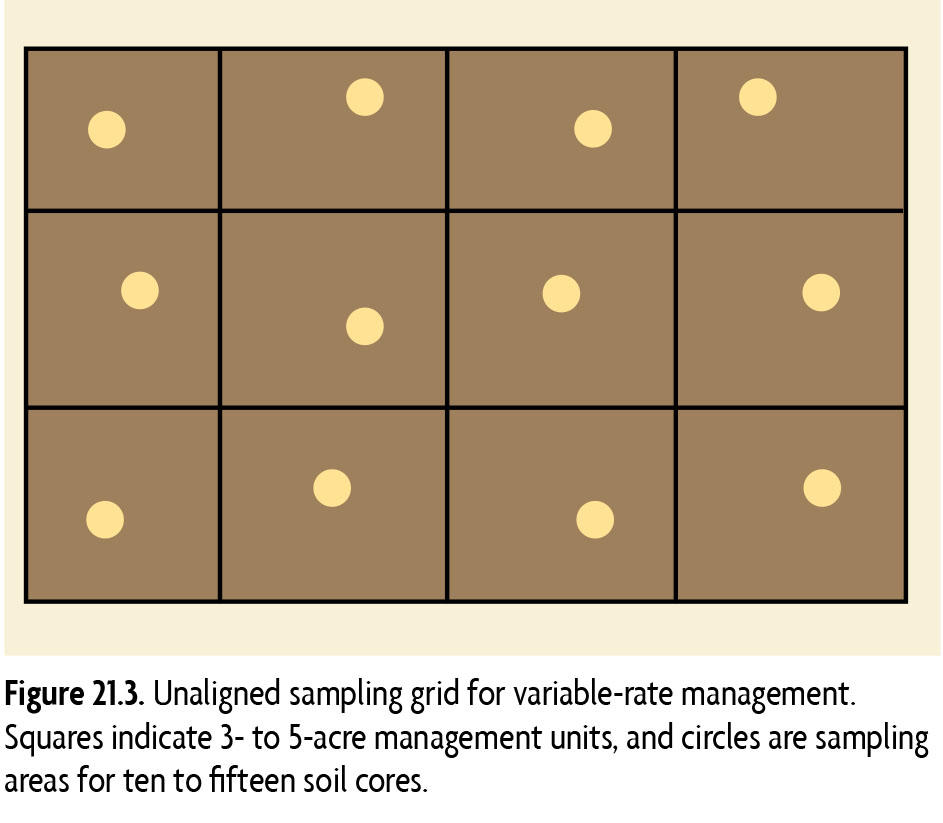 Figure 21.3 Unaligned sampling grid for variable-rate management. Squares indicate 3- to 5-acre management units, and circles are sampling areas for ten to fifteen soil cores.