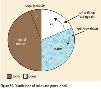 Figure showing the distribution of solids and pores in soil