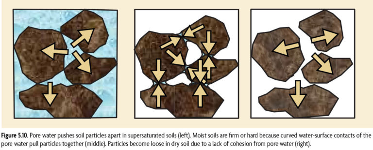 Figure 5.1 Pore water pushes soil particles apart in supersaturated soils (left). Moist soils are firm or hard because curved water-surface contacts of the pore water pull particles together (middle). Particles become loose in dry soil due to a lack of cohesion from pore water (right).