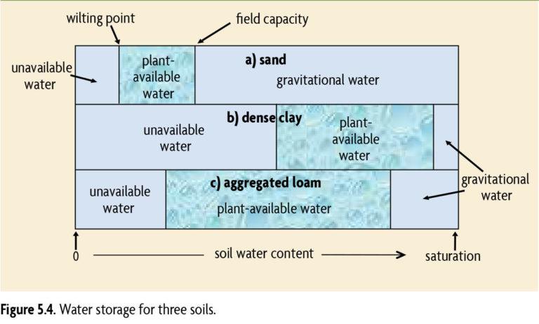 Figure 5.4 Water storage for three soils