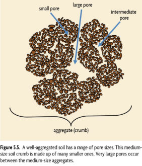 Figure 5.5 A well-aggregated soil has a range of pore sizes. This medium-size soil crumb is made up of many smaller ones. Very large pores occur between the medium size aggregates
