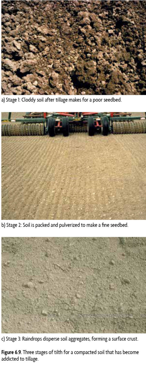 Photo A: Stage 1. Cloddy soil after tillage makes for a poor seedbed. Photo B: Stage 2. Soil is packed and pulverized to make a fine seedbed. Photo C: Stage 3. Raindrops disperse soil aggregates forming a surface crust