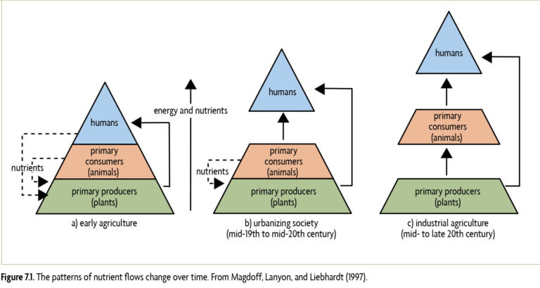 Figure 7.1 The patterns of nutrient flows change over time. From Magdoff, Lanyon, and Liebhardt (1997).