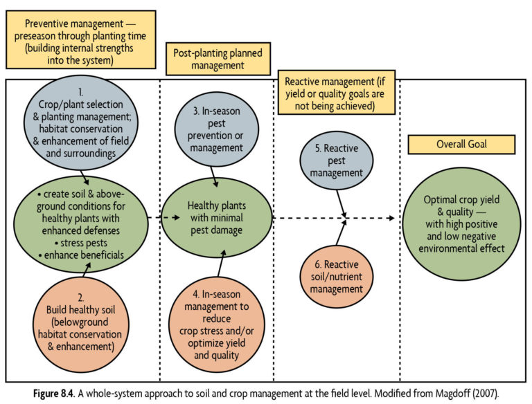 A whole-system approach to soil and crop management at the field level. Modified from Magdoff (2007).