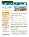 Cover Crop Facts Cover Image