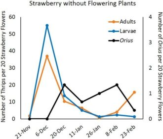 strawberry without flowering plants graph