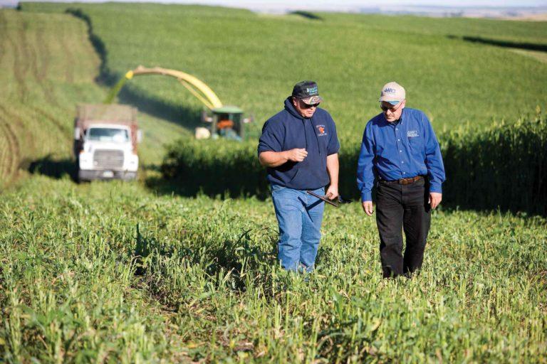 Two men walking and talking in a farm field