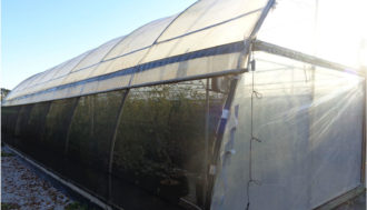 high tunnel with pest exclusion netting