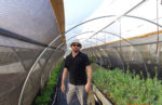 Farmer Will Mastin standing in his high tunnel.