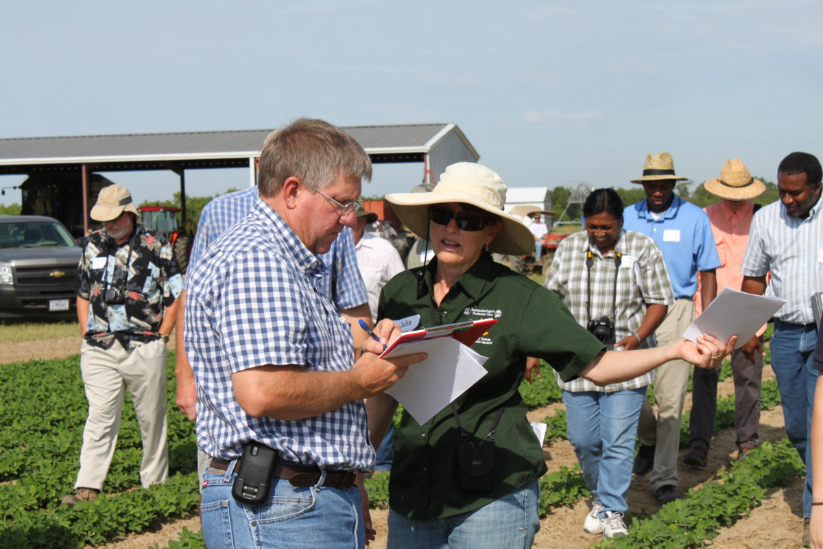 Organic weed management field day
