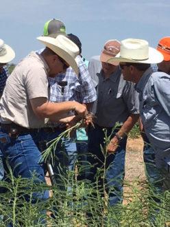 Cover crop farm tour