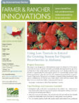 download Using Low Tunnels to Extend the Growing Season for Organic Strawberries in Alabama fact sheet in pdf format