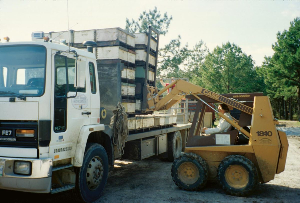 Honey bee hives being loaded onto a truck.