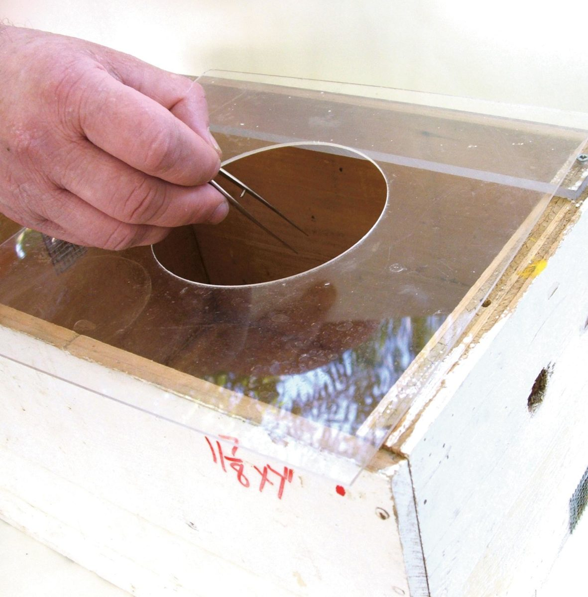 A wooden bumble bee hive box with the lid removed.