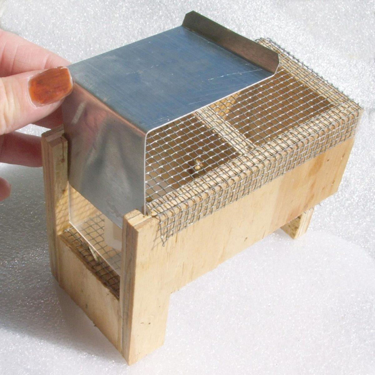 A queen starter box.