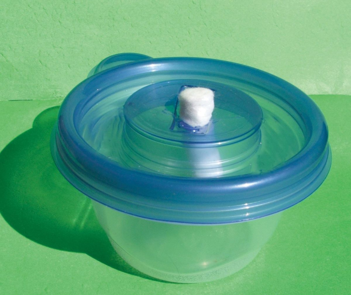 A simple nectar feeder consisting of a dental wick and plastic container.