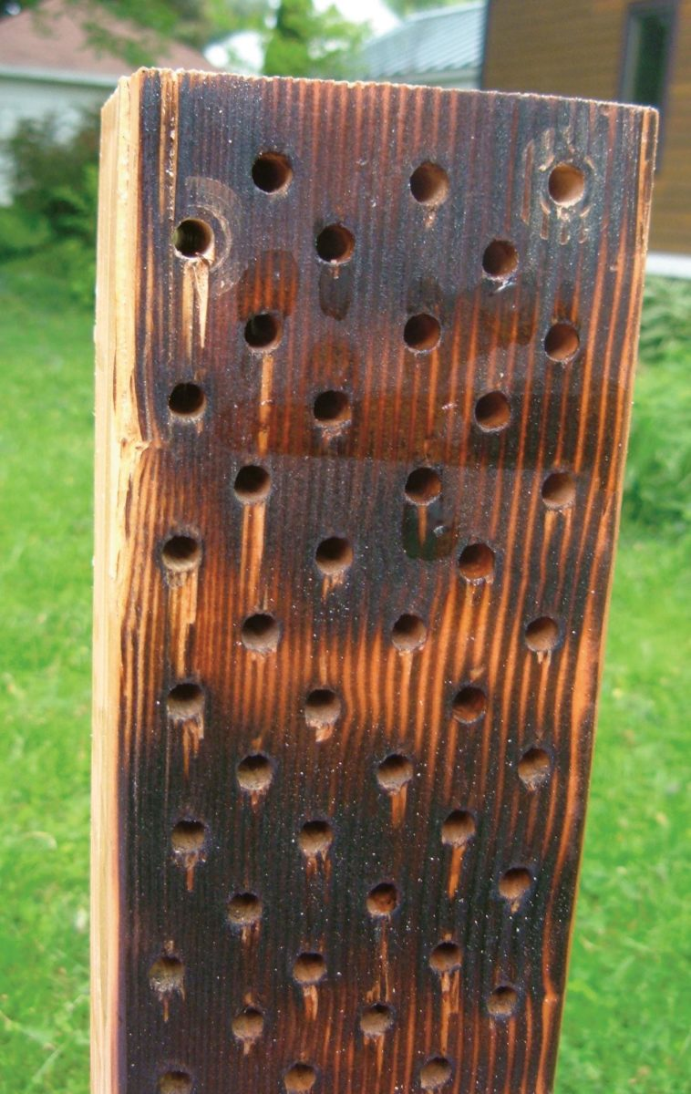 Close-up of drilled block.