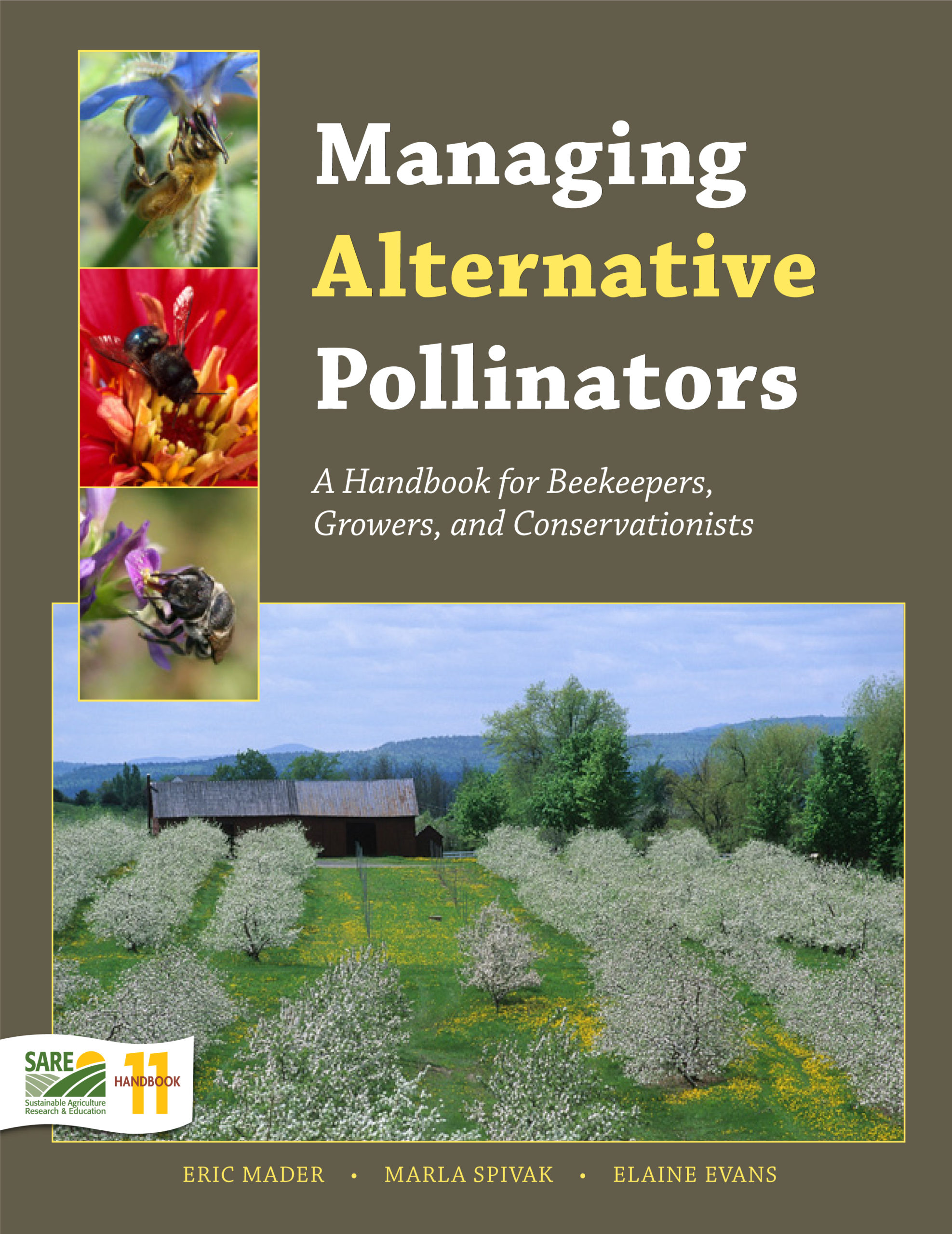 Books How to Manage the Blue Orchard Bee As an Orchard Pollinator Professional Science