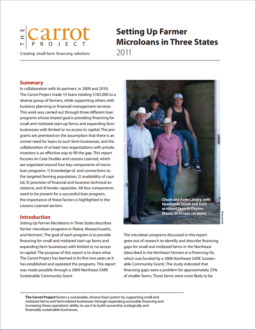 download case studies on setting up microloans in pdf format
