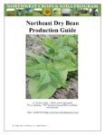 Cover of Northeast Dry Bean Production Guide